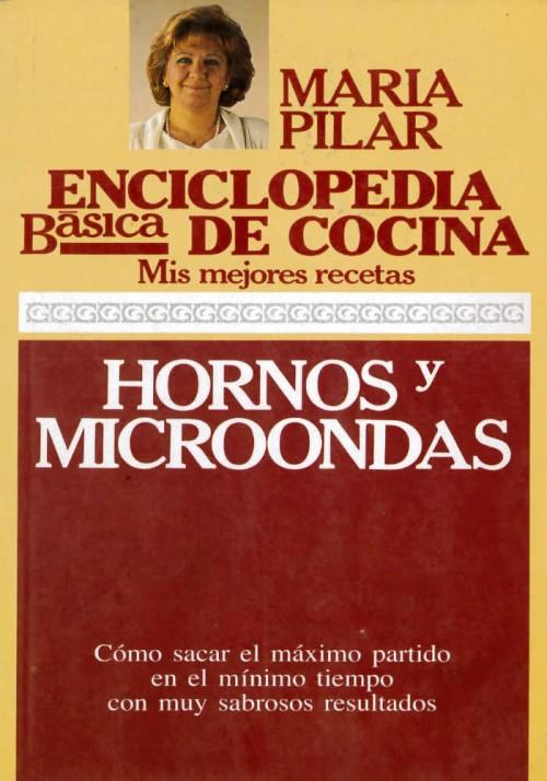 Enciclopedia básica de cocina.Mis mejores recetas. Hornos y Microondas